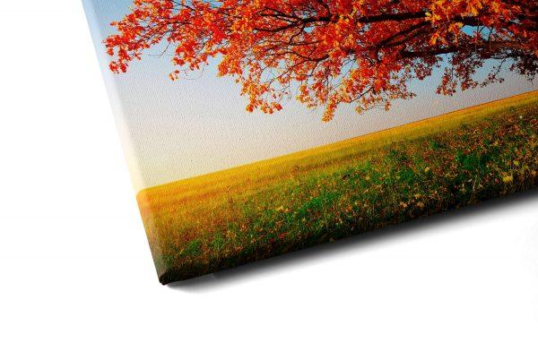 """Conjunto de Quadros """"Árvore do Outono"""" – em tela com detalhe a esquerda"""