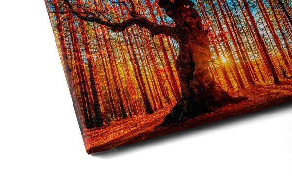 """Conjunto de Quadros """"Outono Vermelho"""" – em tela com detalhe a esquerda"""
