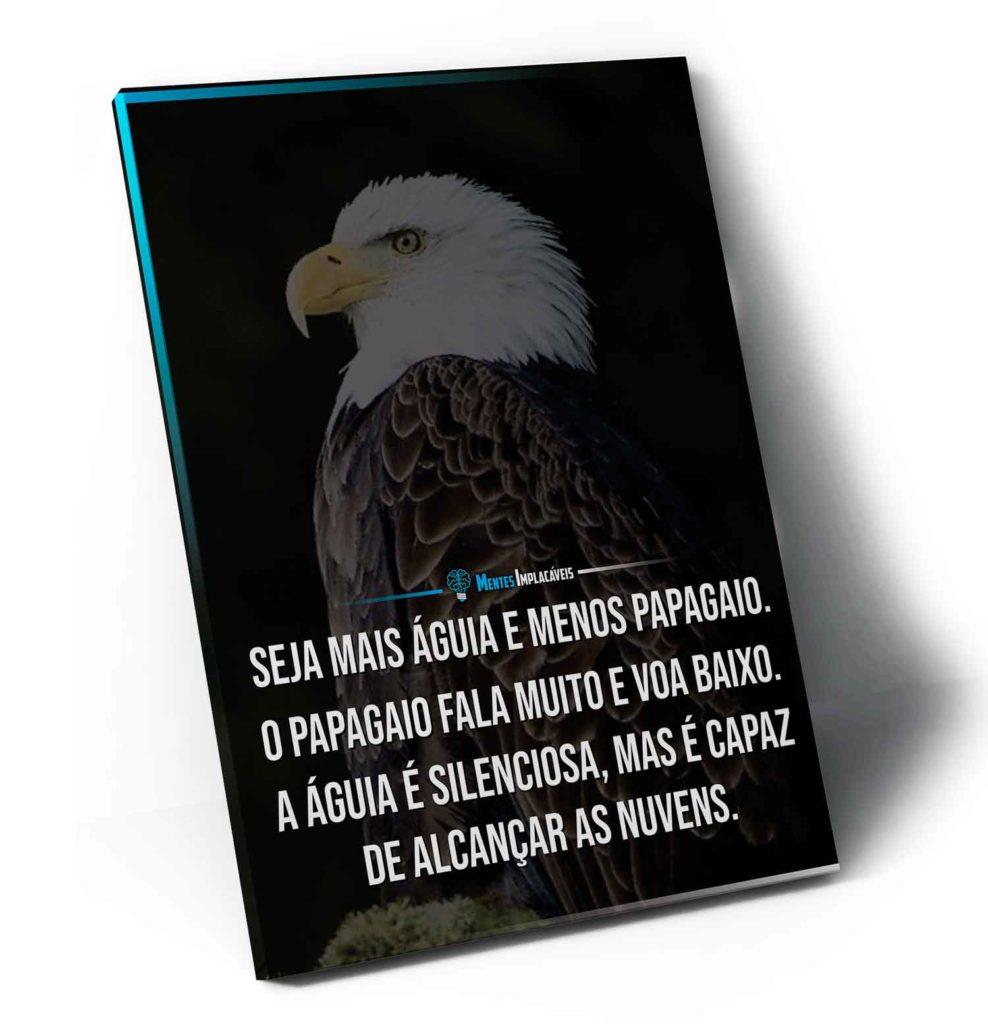 Quadro Mentes Implacáveis – Seja mais Águia e Menos Papagaio em filete preto