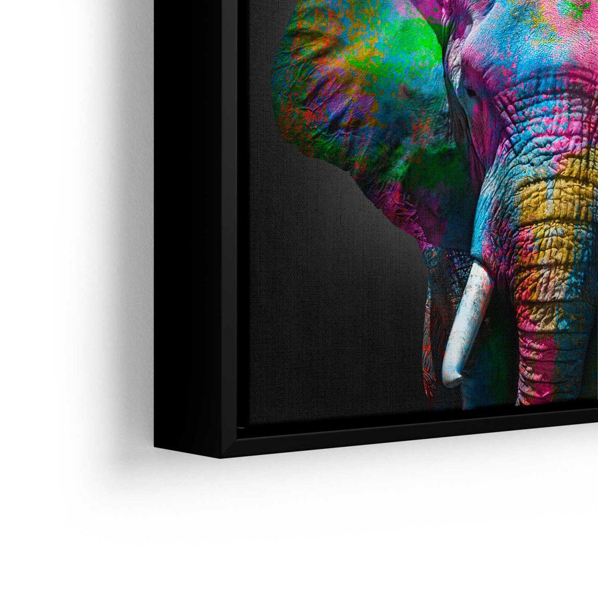 Quadro Elefante aproximado moldura