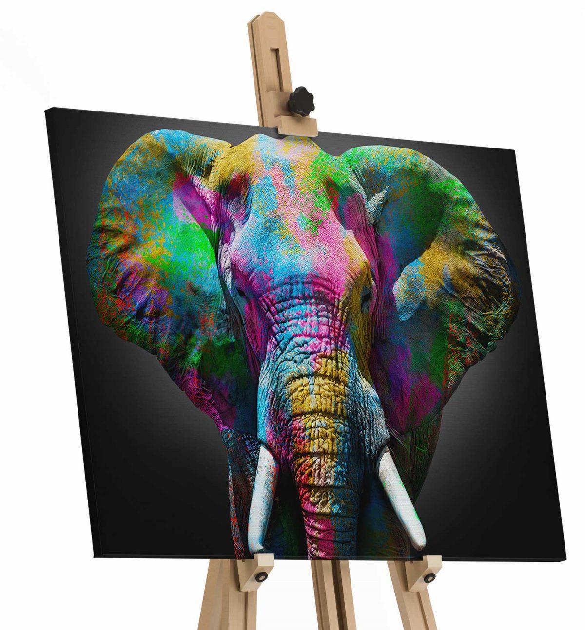 Quadro Elefante detalhe apresentação