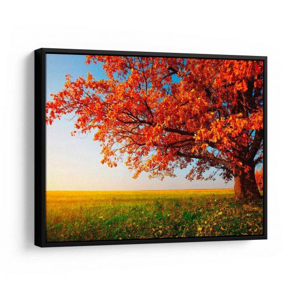Quadros Decorativos Árvore do Outono