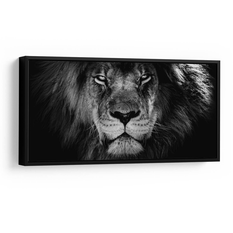 Quadro O Olhar do Leão Preto e Branco