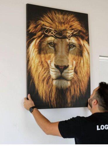 Quadro Leão de Judá photo review