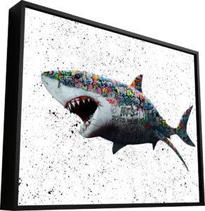 Quadro Tubarão Grafite CRAIG